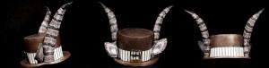 HAT1 (1)